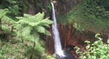 010-Costa-Rica-Wasserfall-2