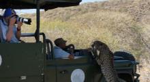012-Namibia-Tierfotografie