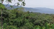 018-Costa-Rica-Dschungel-2