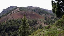 020-La Palma-Cumbre-Vieja-1