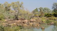 044-Namibia-Kunenefluss