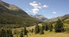 051-Kanada-Alberta-Rocky-Mountains-1