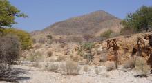 062-Namibia-ausgetrocknetes Flussbett