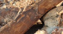 078-Namibia-Twyfelfontein-Felsgravuren-1