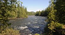 091-Kanada-Wells-Gray-Murtle-River