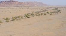 092-Namibia-Trockental