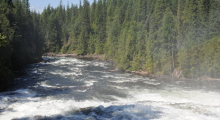 095-Kanada-Wells-Gray-Dawson-Falls-4
