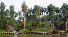 104-Singapur-Gardens-by-the-Bay-1