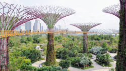 106-Singapur-Supertree-Grove-2
