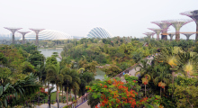 112-Singapur-Gardens-by-the-Bay-3