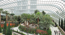 117-Singapur-Gardens-by-the-Bay-8