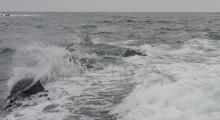 123-Namibia-Walvis-Bay-Delfinbeobachtung-2