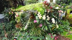124-Singapur-Gardens-by-the-Bay-15
