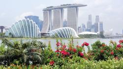 129-Singapur-Gardens-by-the-Bay-20