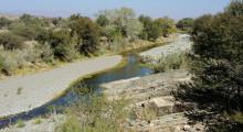 131-Namibia-Zebra-River-2