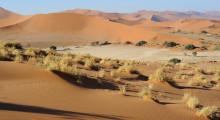 132-Namibia-Sossusvlei-1