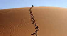 133-Namibia-Sossusvlei-Duene-1