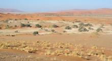 135-Namibia-Sossusvlei-3