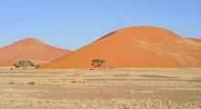 136-Namibia-Sossusvlei-Duene-2