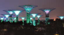 145-Singapur-Supertree-Grove-Nacht-2