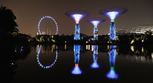 146-Singapur-Supertree-Grove-Nacht-3
