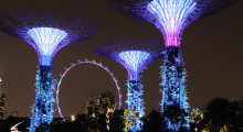 147-Singapur-Supertree-Grove-Nacht-4