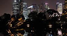150-Singapur-Gardens-by-the-Bay-Nacht-4